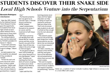 Viper Day Story